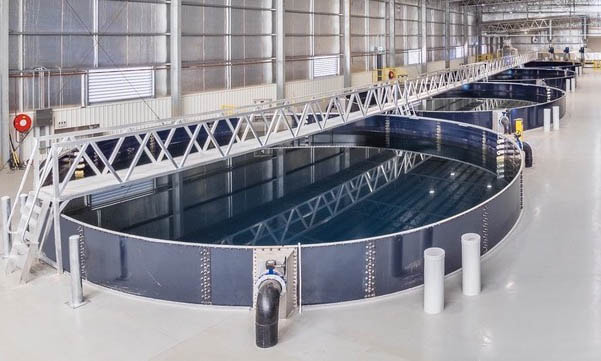 land-based salmon farming aquabanq