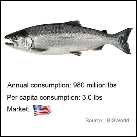 coho salmon aquabanq